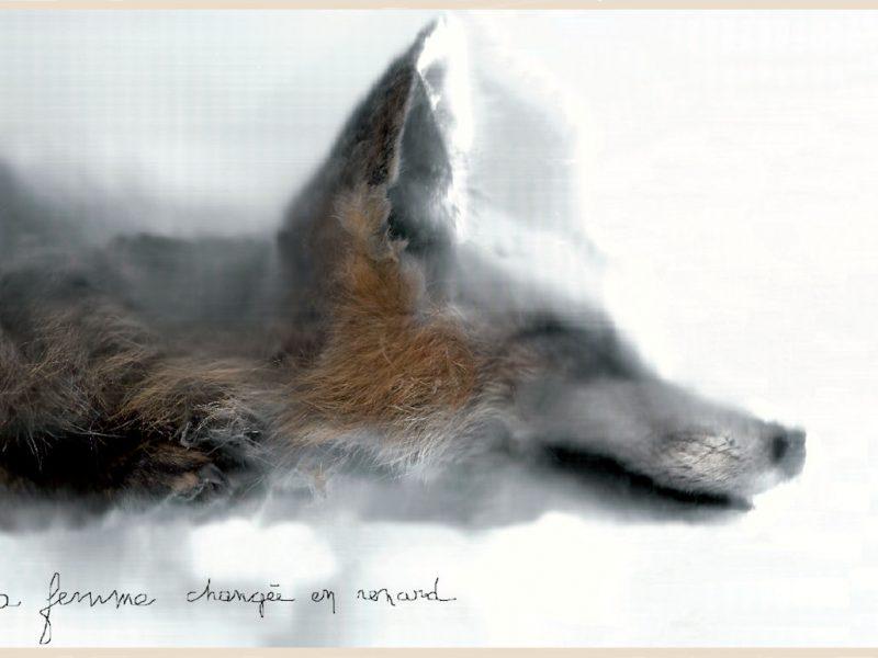 """Visuel exposition """"la femme changée en renard"""""""