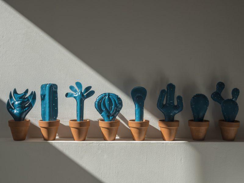 Cactus, Martine Parcineau | Photo : Charlie ABAD