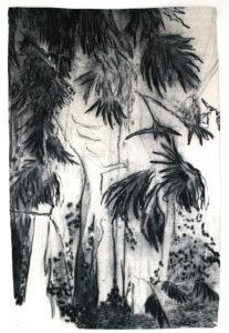 """Photo : """"Les bois noirs"""" de Delphine Gigoux-Martin"""
