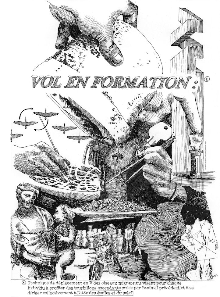"Affiche expositiion ""Vol en formation"""