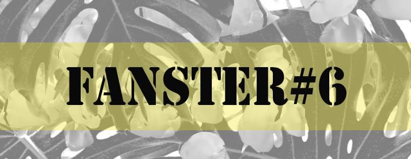 Image : présentation Fanster #6