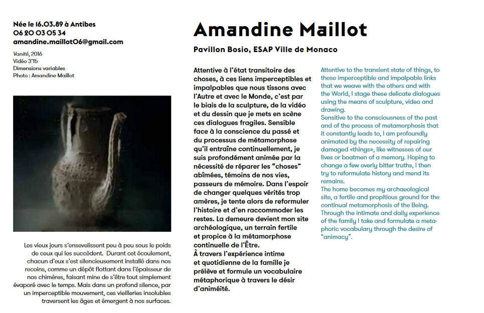 Visuel : Amandine Maillot, prix de la jeune création à la biennale de Mulhouse 017