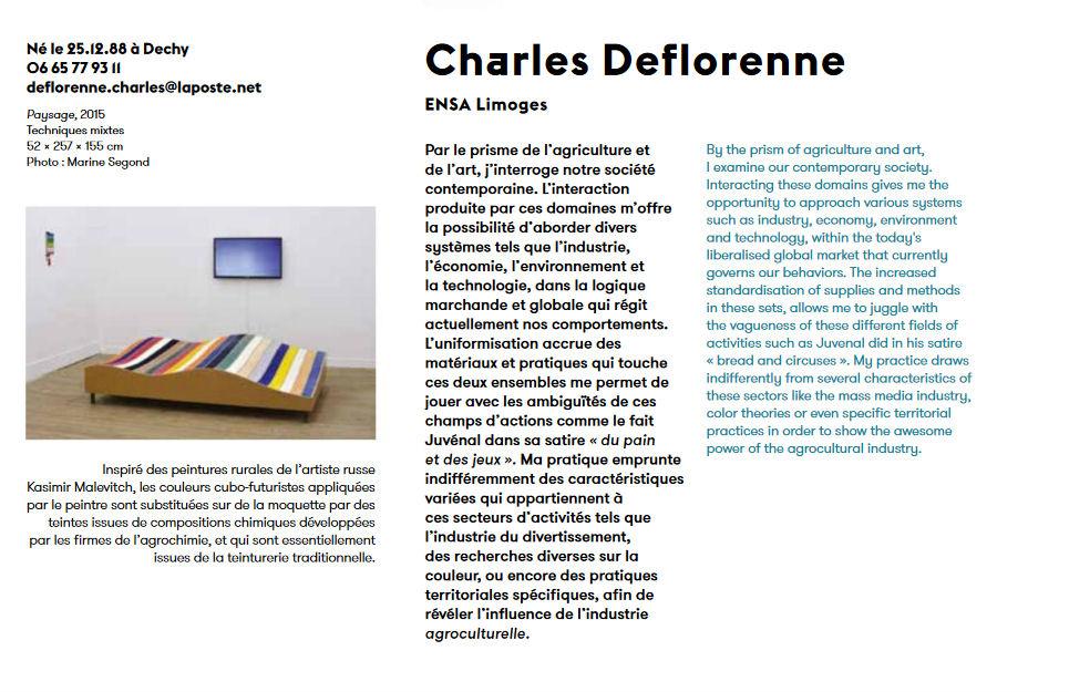Visuel : Charles Deflorenne, prix de la jeune création à la biennale de Mulhouse 017