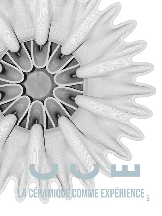 Image, page de couverture : VOLUME 3, Le catalogue de l'exposition L'Arbre de Darwin   La Céramique comme expérience