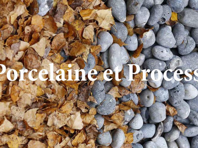 Image : page de couverture de la publication ARC Porcelaine et process