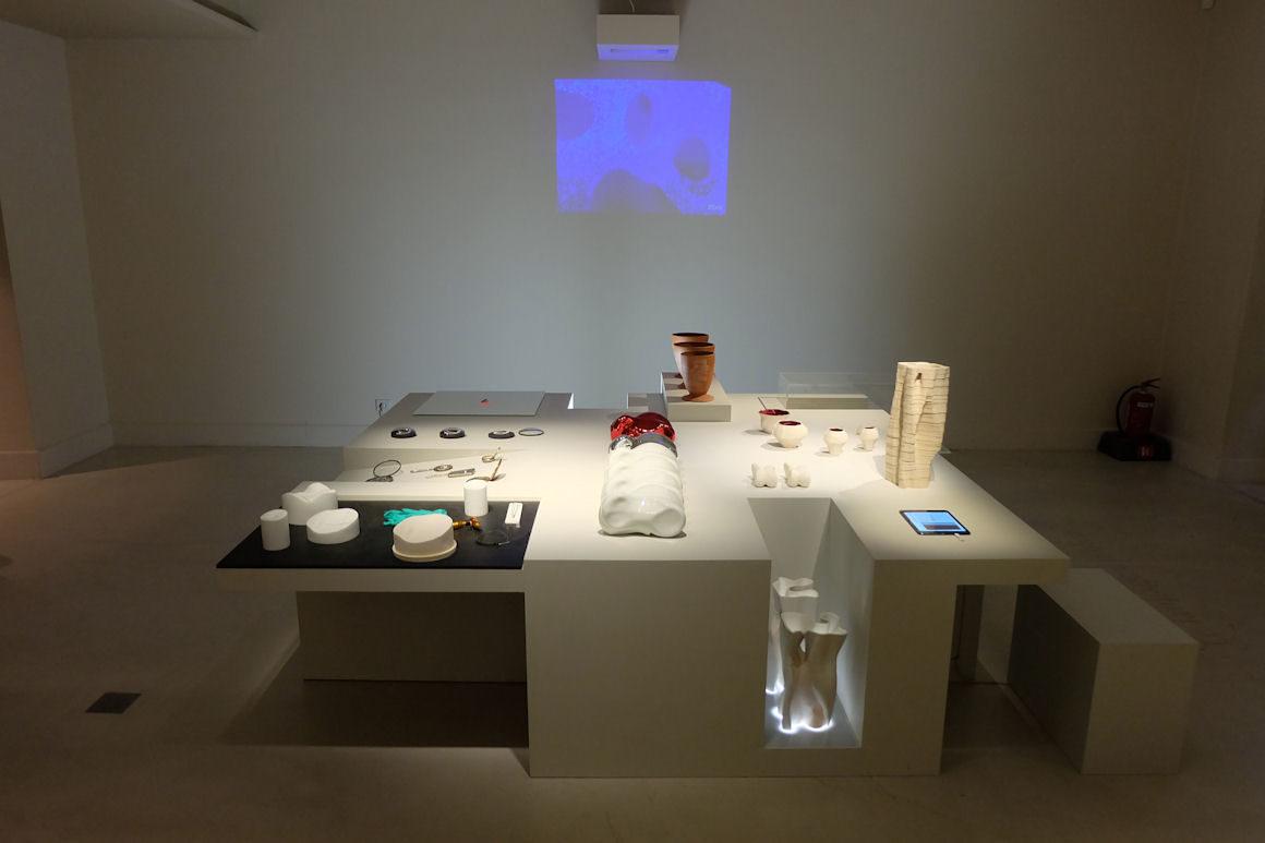 Photo : exposition Formes Vivantes avec le Laboratoire CCE