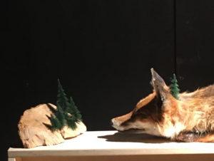 "Photo : Delphine Gigoux-Martin ""renard"", exposition ""Sauvages ?"""