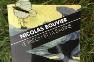 Photo : Illustration de Nicolas Bouvier, Le hibou et la baleine