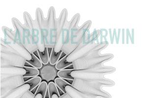 Image : visuel de l'exposition L'arbre de darwin