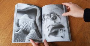 """Photo : illustration extraite de la publication """"Limoges Horizon Guéret"""""""