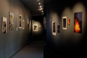 """Photos : visuel de l'exposition """"Sous un ciel doré"""" de Anna Haillot. Crédit photo : Marie-Pierre Saunier"""