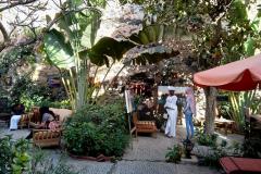 L'ENSA participe à « Gorée Regards sur Cours 2019 »