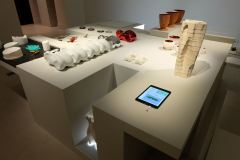 Exposition FORMES VIVANTES avec le Laboratoire CCE