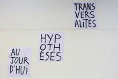rentrée 2020 : TRANSVERSALITÉS ET HYPOTHÈSES